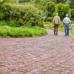 Parkinson's Treatments